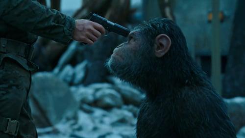 Восстание обезьян торрент