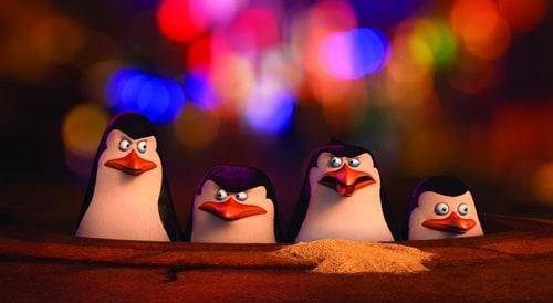 stefan mc grath penguin press