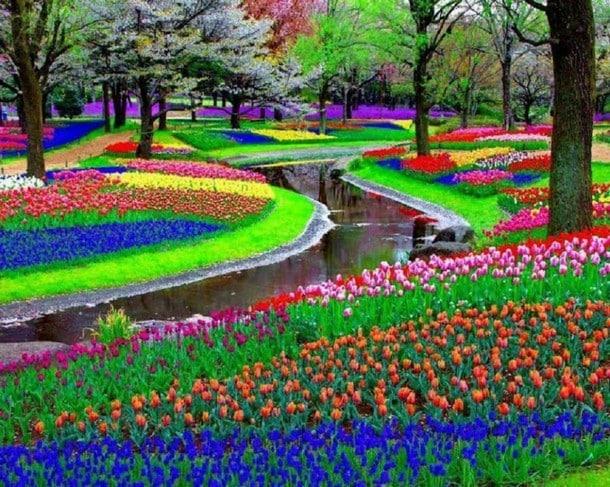 Keukenhof Gardens (Lisse, Netherlands)