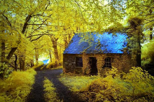 This Adorable Houses Is Found Hidden In Woods Near The Town Of Stradbally Midlands Ireland Living Cottage Must Be Every Hopeless Romantics