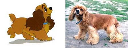 Animated Dogs And Their Breeds List