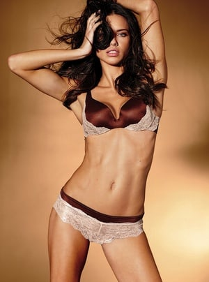 a119c6b3623 adriana lima for vs lingerie part two